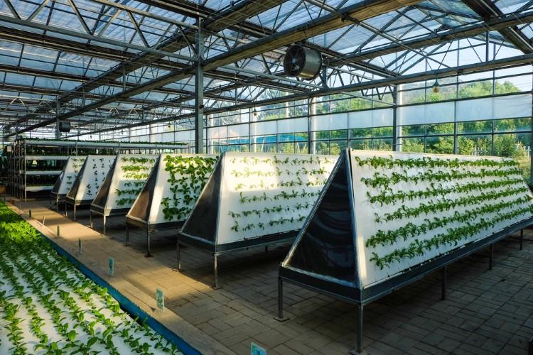 تاثیر نوع و تجهیزات نگهداری محصول بر هزینه ساخت گلخانه