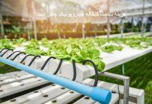 تصویر از هزینه ساخت گلخانه هیدروپونیک
