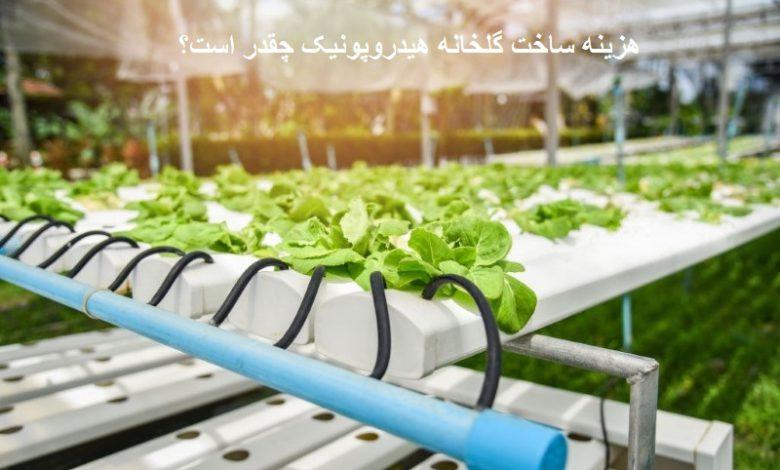 هزینه ساخت گلخانه هیدروپونیک